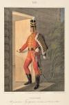 Рядовой Изюмского Гусарского полка, с 1776 по 1783 год. Таблица №628. Литография раскрашенная акварелью. 1844 г.  38х26 см. ВИМАИВиВС